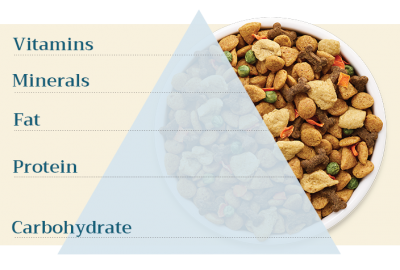 Vitamins, minerals, fat, protein, and carbohydrates are all macronutrients included in the dog food pyramid.