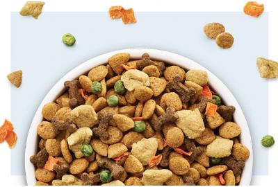 Bowl of Hypoallergenic Dog Food