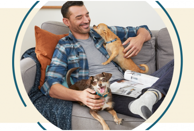 Man With Two Small Dogs on Couch