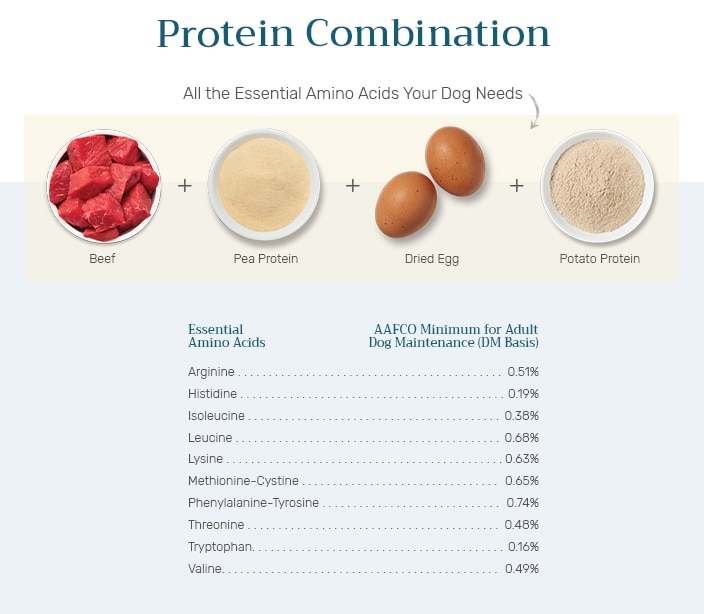 List of essential amino acids found in beef, pea protein, dried egg and potato protein